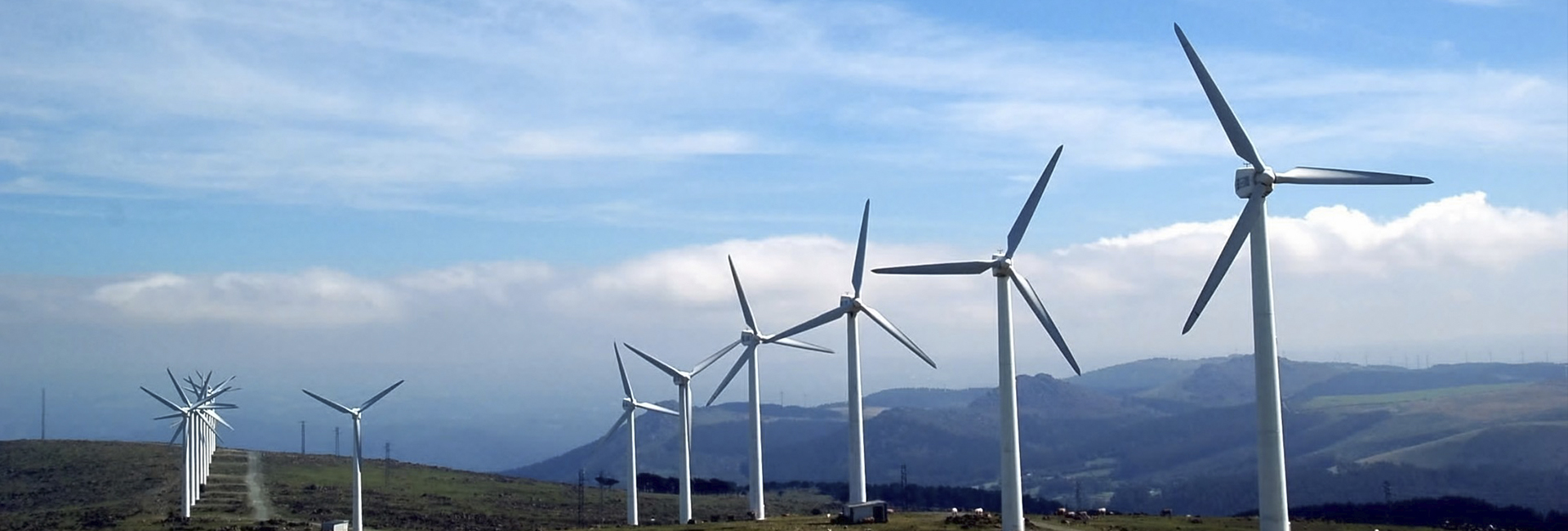 Cost-effective renewable energy projects